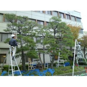 Kyotoban gyakorlaton 2012