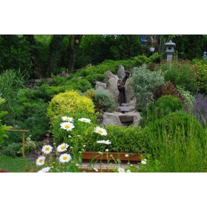 Little Hill garden