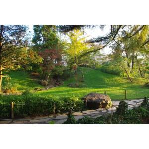 Fővárosi Állat és Növénykert Japanese garden