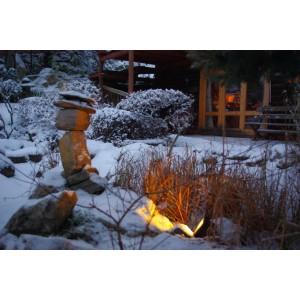 Hanami east garden -Winter 2010