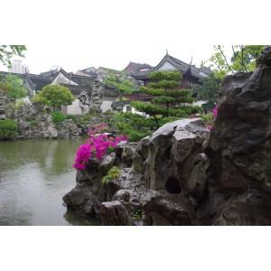 Sanghai gardens