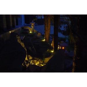 Forest path garden at night