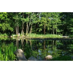 Szeged Botanic garden